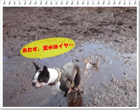 2012_0708_161153-DSC03814.jpg