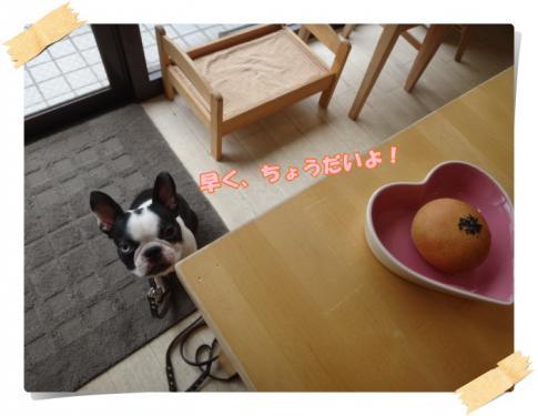 2012_0916_133546-DSC04150.jpg