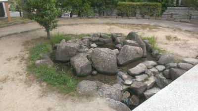 Imag1854