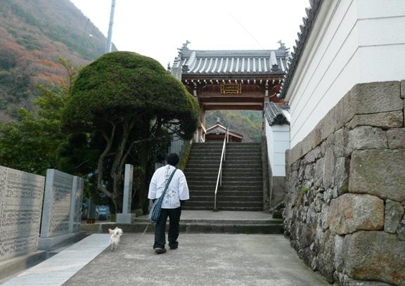 前のお寺から坂道を登ること5分。