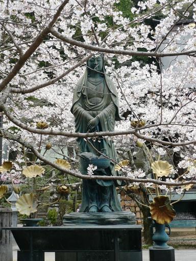 桜とマッチして、更に神々しい。