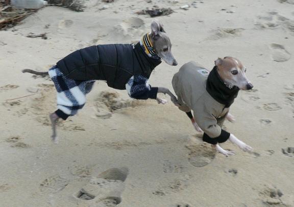 唯一ぶれなかった砂浜での写真