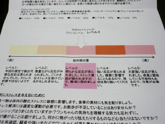 検査結果報告書(2)