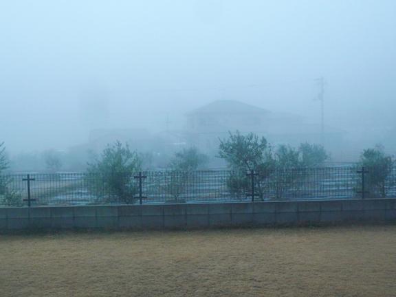 朝7時の風景。