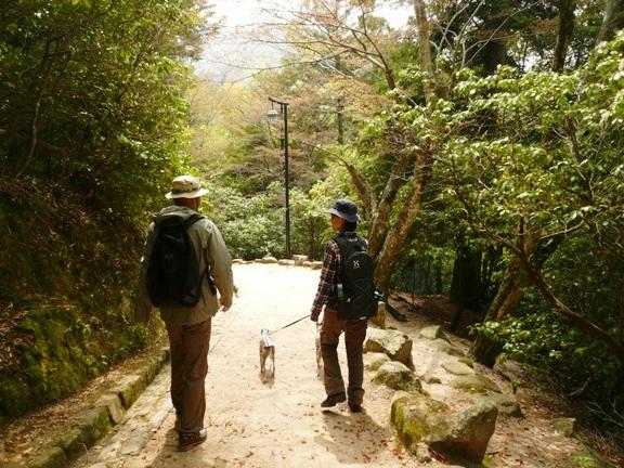 ホントは登山の予定だったけど、自然散策道に変更・笑