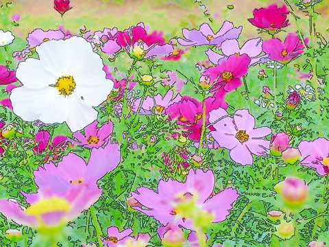 pastel3.jpg