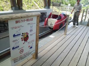 祖谷ふれあい公園 レールカー