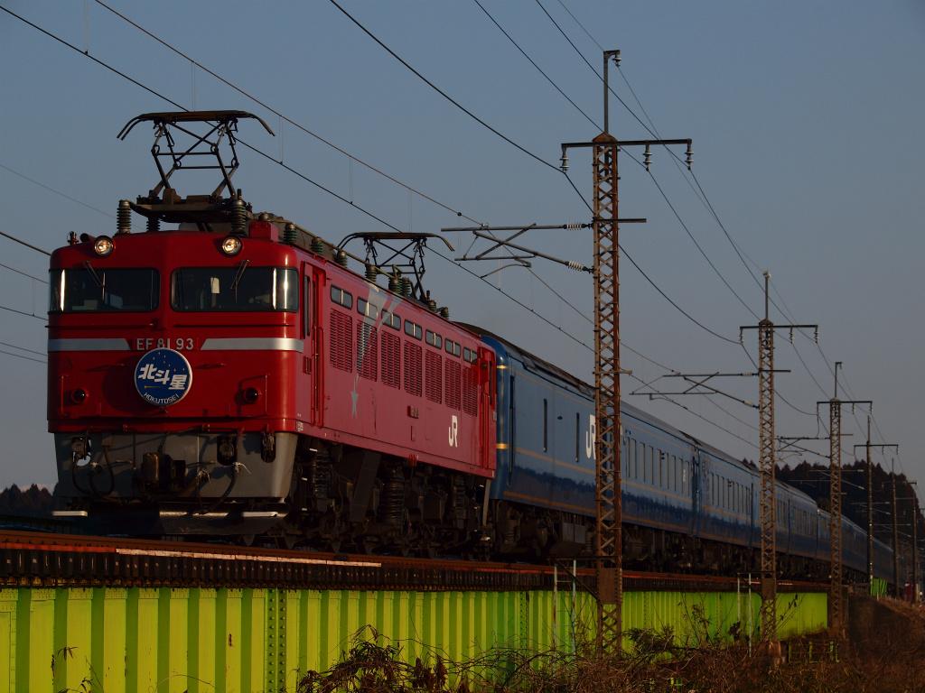 P1316361.jpg
