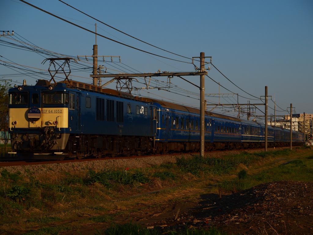 P4258021.jpg