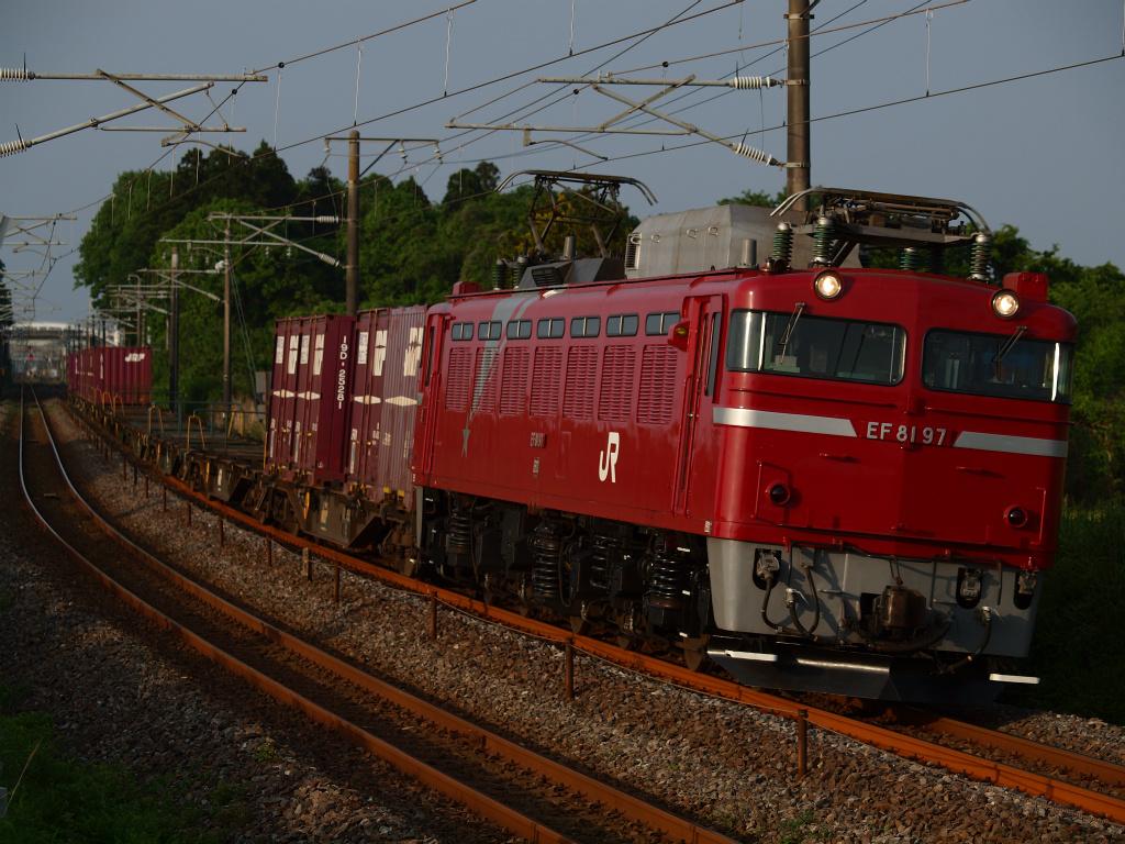 P5228616.jpg