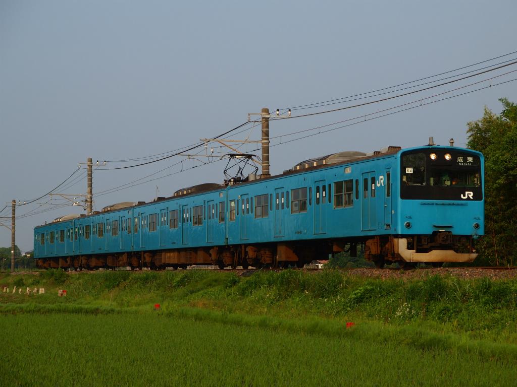 P6054594.jpg
