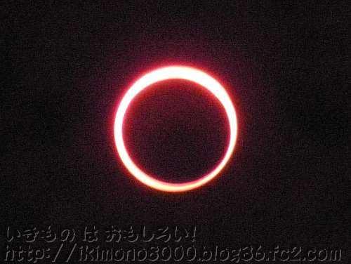 太陽と月が一緒に見られるのが日蝕