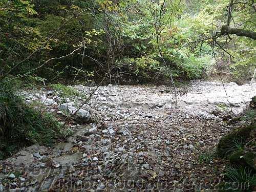 花崗岩の河原に変わってしまった支流から見たモミジ谷本流との分岐点