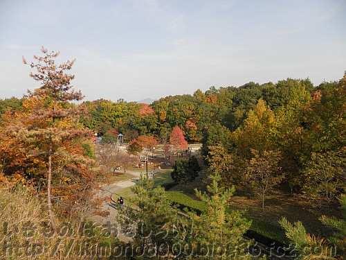 峠のつり橋から見た水辺の里と紅葉