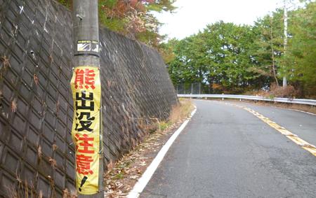 201211124_12.jpg