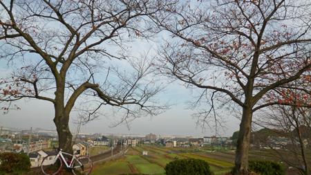 20121130_1.jpg