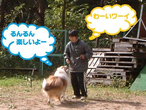 10-10-17-7_20101019011101.jpg