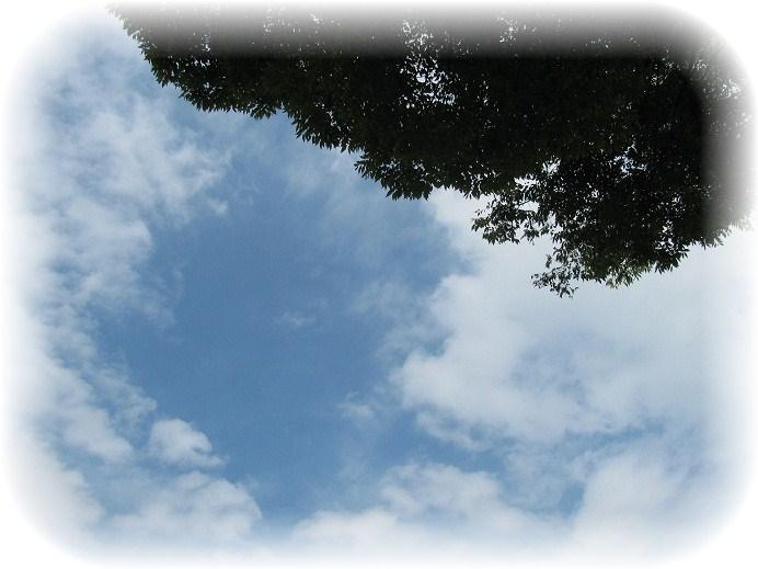 _44才の日の空