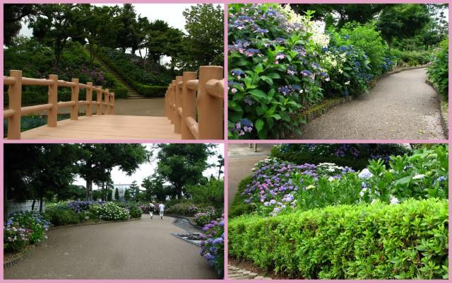 2012-06-25-1429-341.jpg