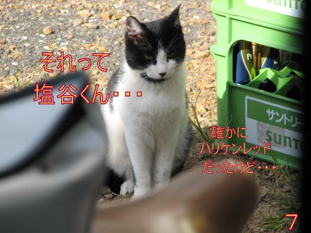 IMG_5649-2.jpg