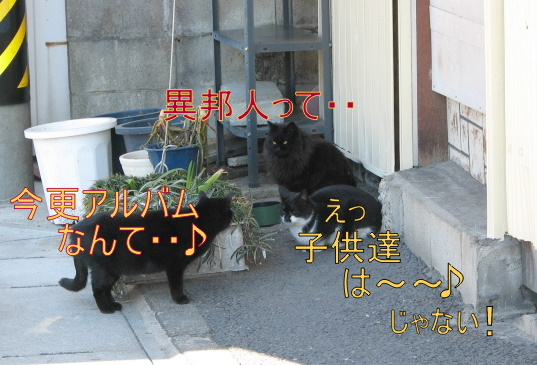 IMG_6193-1.jpg