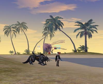信託の島1