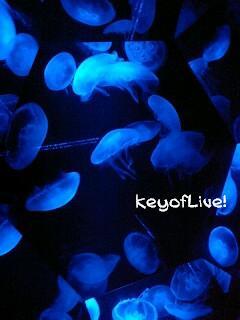 KeyofLive!