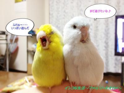 IMG_0822_convert_20120716231422.jpg