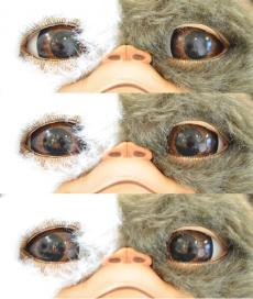 gizimo-eye-1.jpg