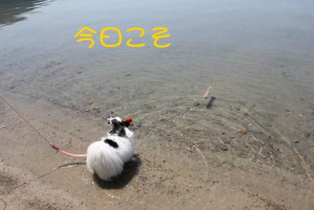 1205202.jpg