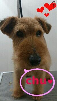 rakugaki_20120909_0002.jpg