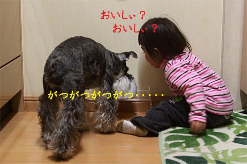 01_23_12_1.jpg