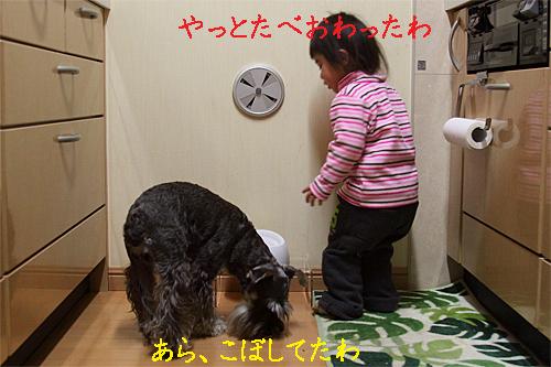 01_23_12_2.jpg