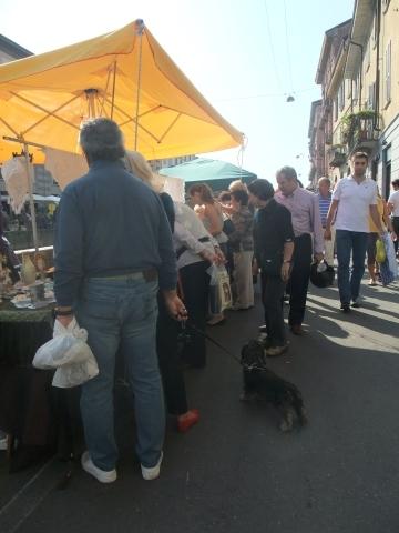ただいまイタリアdeミラネーゼ ◆◇ オオサカネーゼのイタリア生活 ◇◆-kotto5