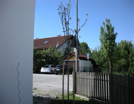 DSCN6741_convert_20120505192045.jpg