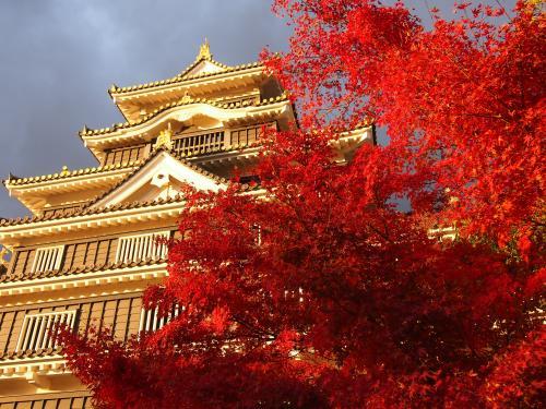 紅葉... 岡山城1