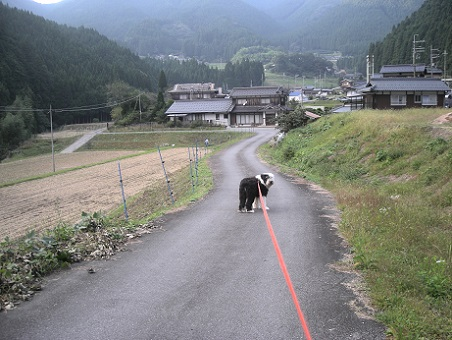 上小田風景2