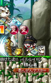 イルレイKC(白虎剣士ファミリア)