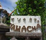 ヤソウカフェ YAMACHA14