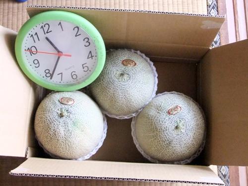 2011.6.22 稲村さんのメロン 003 (9)