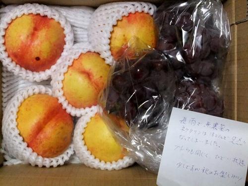 2011.9.8 大嶽さんからのぶどう 021