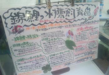 2010.10.29ブログ (3)