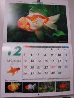 2010.12.1ブログ画像 (1)