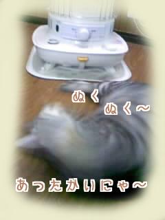 ストーブ ばんざい☆