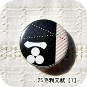 25毛利01