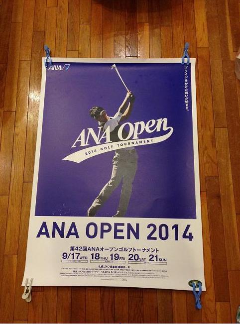2014 ANAオープン
