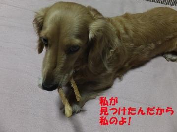 2本の牙?7