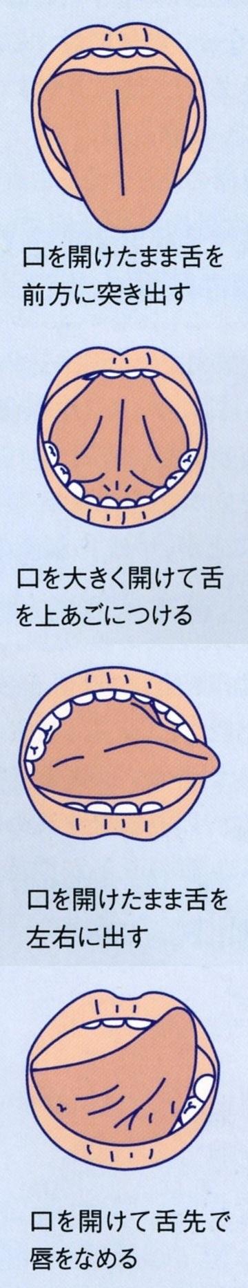 舌・唾液腺運動1234