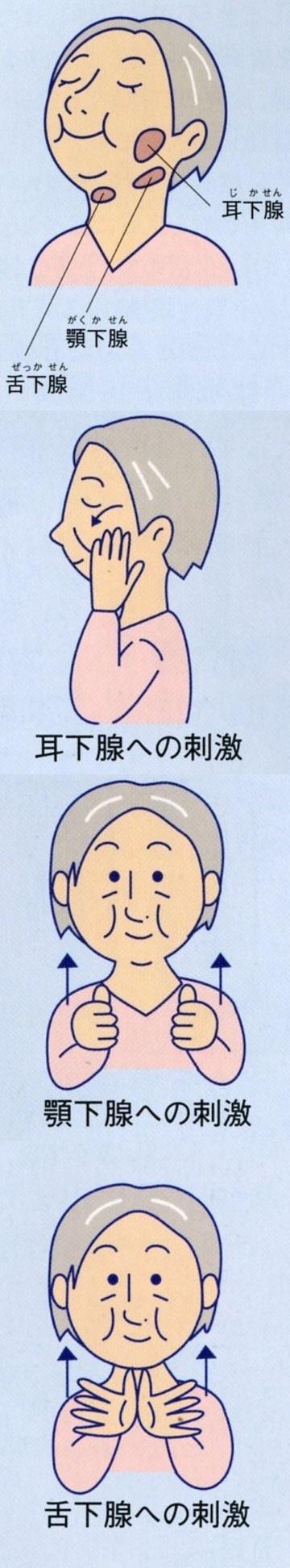 舌・唾液腺運動120