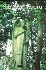 $『Talking with Angels』西洋墓地の天使像 : 岩谷薫-09_10_7